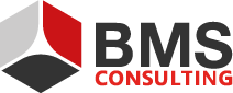 BMS Consulting GmbH Logo